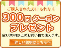 もれなく300円クーポンプレゼント